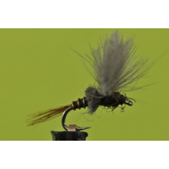 Cripple Thor for fly fishing Bozeman's BWO hatches